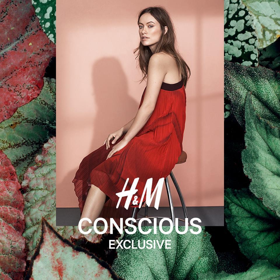 hm conscious exclusive
