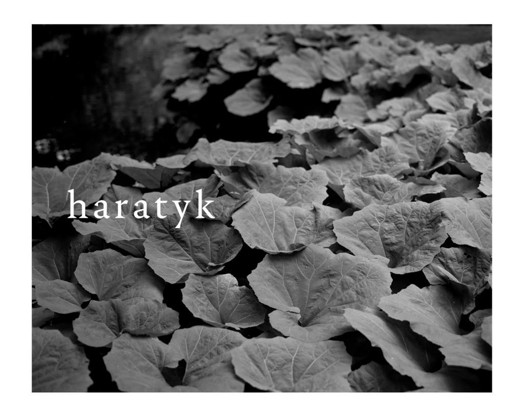 Haratyk_ss18_23